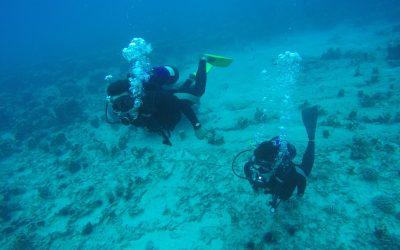 Mergulho – Dia Inteiro